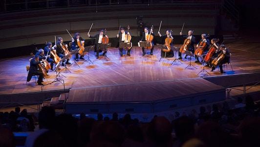 Les 12 violoncellistes des Berliner Philharmoniker fêtent leurs 40 ans