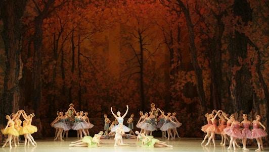 Don Quichotte d'Alexander Gorsky d'après Marius Petipa, musique de Léon Minkus